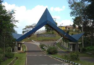 kiara-payung