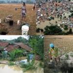 Musim Hujan Kebanjiran, Kemarau Kekeringan Petani Rancaekek Menjerit