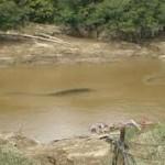 Cikijing Sisakan Limbah, Air Sungai Kian Menyusut