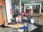 Mohon Maaf, PMI Sumedang Kehabisan Stok Darah Golongan O Dan A