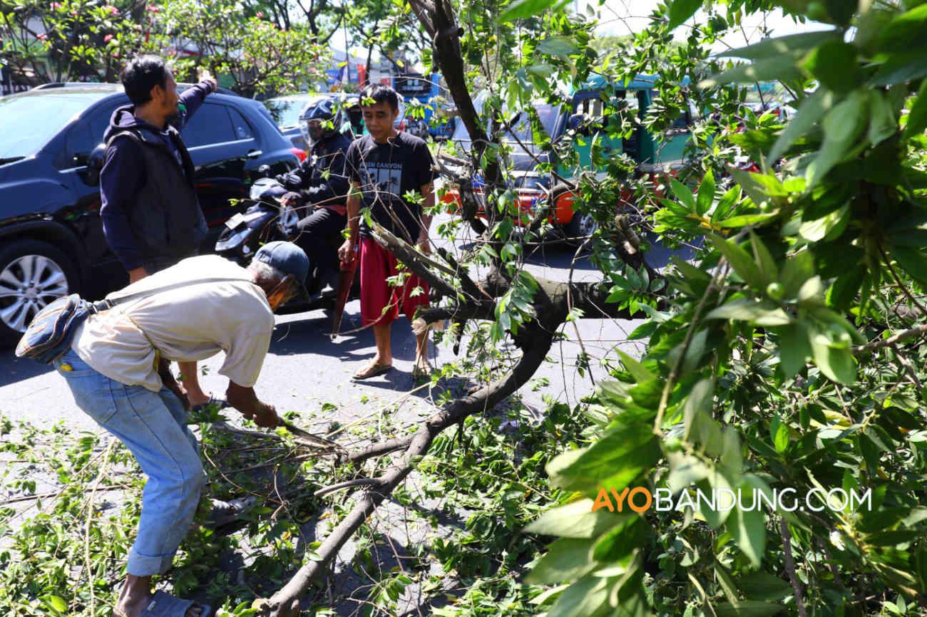 Dua Korban Tewas Akibat Pohon Tumbang di Tamansari Warga Sumedang
